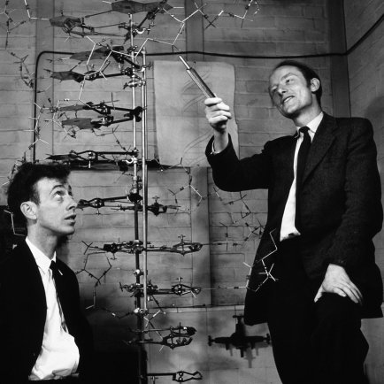 watson-crick-dna-model